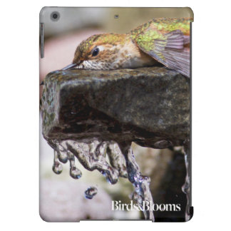 Hummingbird  Laying in Water iPad Air Cover