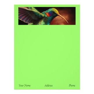 Hummingbird Letterhead