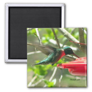 Hummingbird Magnet 2 Inch Square Magnet