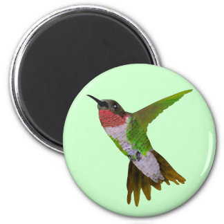 Hummingbird Refrigerator Magnets