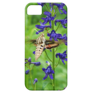 Hummingbird moth iPhone 5 covers