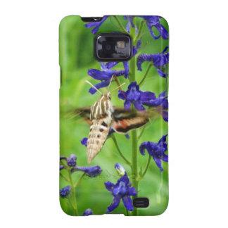 Hummingbird moth galaxy SII covers