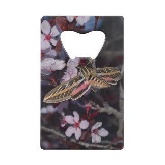 Hummingbird Moth Credit Card Bottle Opener by OBP