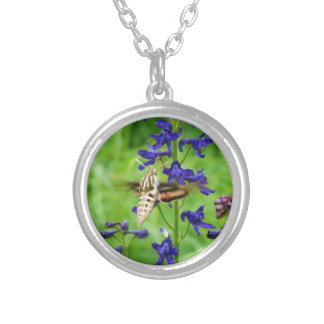 Hummingbird moth jewelry