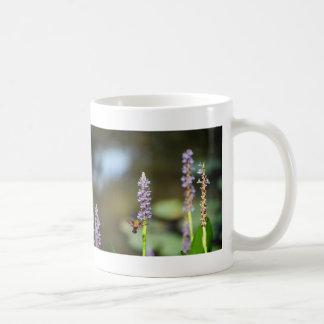 Hummingbird Moth on Pickerel-weed Mug