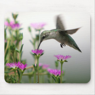 Hummingbird Mouse Pad
