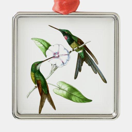 Hummingbird No4 Spring Garden Bird Decor Ornament Zazzle