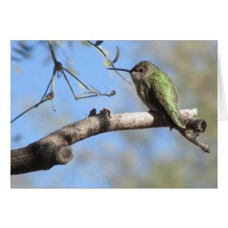 Hummingbird Notecard Stationery Note Card