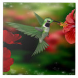 """Hummingbird on a 6x6 Ceramic Tile<br><div class=""""desc"""">Beautiful image of a hummingbird feeding on nectar from a red flower bloom on a 6x6 ceramic tile. This hummingbird on ceramic will add beauty to any room or furnishings where ceramic tile can be applied. Quanity discounts are available on this product. A great gift idea! Order today for fast...</div>"""