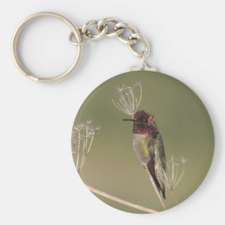 Hummingbird on a branch Keychain
