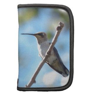 Hummingbird on a Branch Folio Planner
