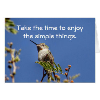 Hummingbird on Branch by SnapDaddy Card