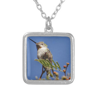 Hummingbird on Branch by SnapDaddy Silver Plated Necklace