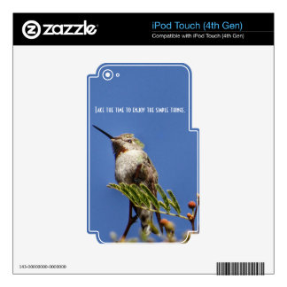 Hummingbird on Branch by SnapDaddy Skins For iPod Touch 4G