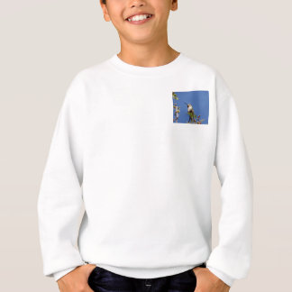 Hummingbird on Branch by SnapDaddy Sweatshirt