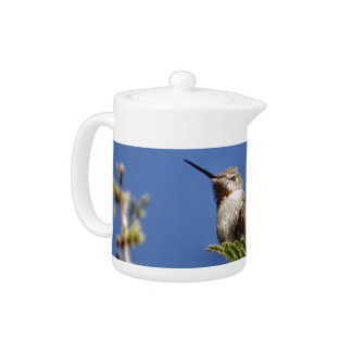 Hummingbird on Branch by SnapDaddy Teapot