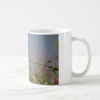 hummingbird on grass classic white coffee mug