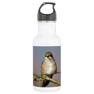 hummingbird on grass 18oz water bottle