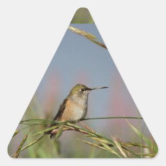 hummingbird on grass triangle sticker