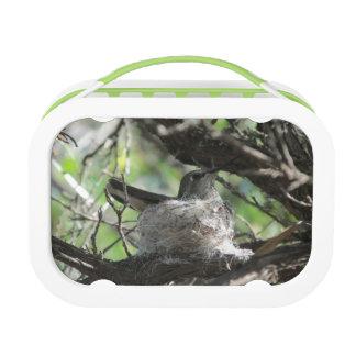 Hummingbird on Nest Lunchbox