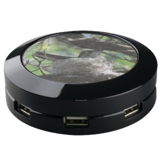 Hummingbird on Nest USB Charging Station