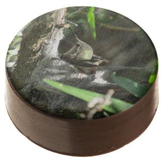 Hummingbird on Nest Chocolate Dipped Oreo