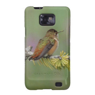 Hummingbird on pine samsung galaxy SII covers