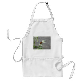 Hummingbird on Queen Ann's lace flower Adult Apron
