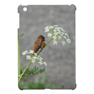 Hummingbird on Queen Ann's lace flower iPad Mini Cover