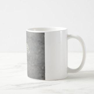 Hummingbird on Queen Ann's lace flower Classic White Coffee Mug