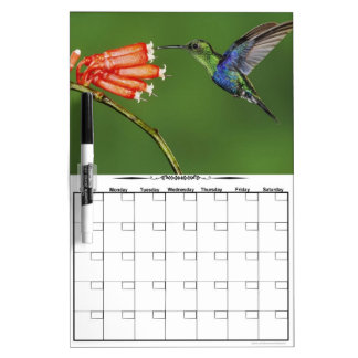 Hummingbird Orange Flowers Dry Erase Whiteboard