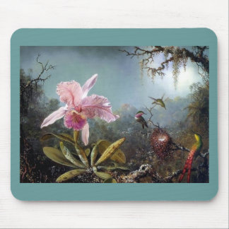 Hummingbird orchid flower tropical forest painting mouse pad