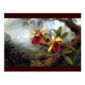Hummingbird Orchids painting Postcard
