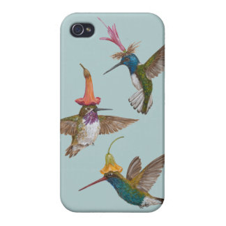 hummingbird party iPhone4 case
