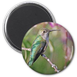 Hummingbird Perch II 2 Inch Round Magnet