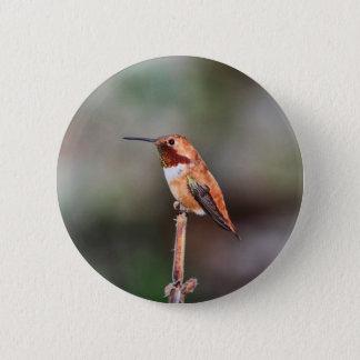 Hummingbird Photo Button