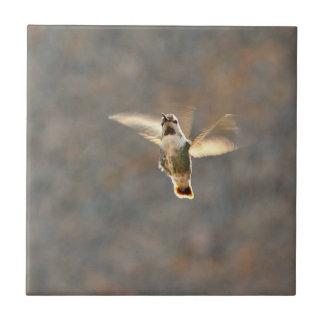 Hummingbird photo tile!