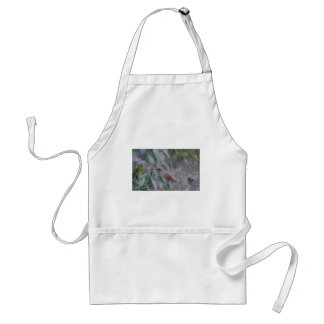 Hummingbird - playing in the rain adult apron