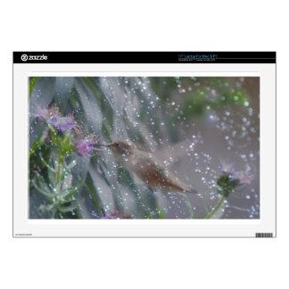 "Hummingbird - playing in the rain skin for 17"" laptop"
