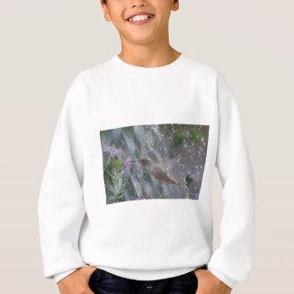 Hummingbird - playing in the rain sweatshirt