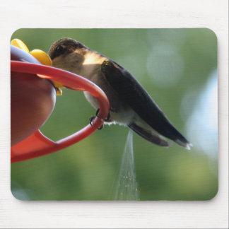 Hummingbird Poop! Mouse Pad