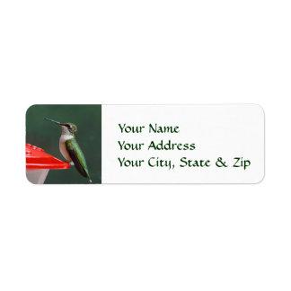 Hummingbird Portrait Custom Return Address Labels