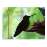 standard_postcard - zazzle_postcard