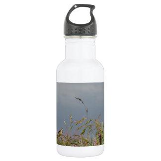 Hummingbird rest 18oz water bottle