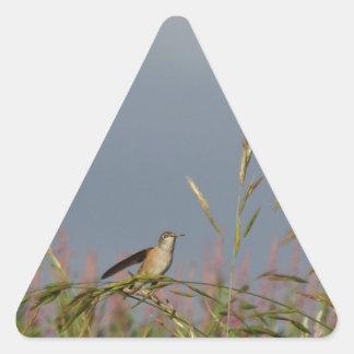 Hummingbird rest triangle sticker