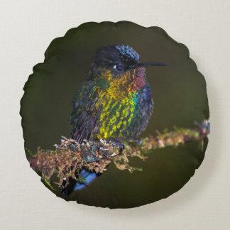 Hummingbird Round Pillow