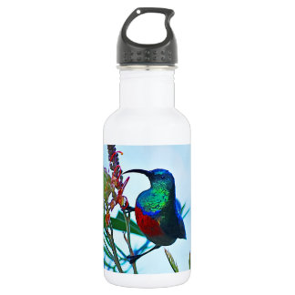 Hummingbird ruby throated 18oz water bottle