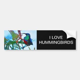 Hummingbird ruby throated car bumper sticker