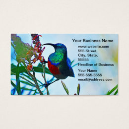 Hummingbird ruby throated business card