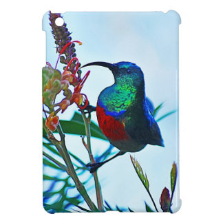 Hummingbird ruby throated cover for the iPad mini
